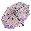 Сгъваем чадър, Ирисите на Ван Гог