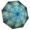 Сгъваем чадър, Колибри на братя Хаутман