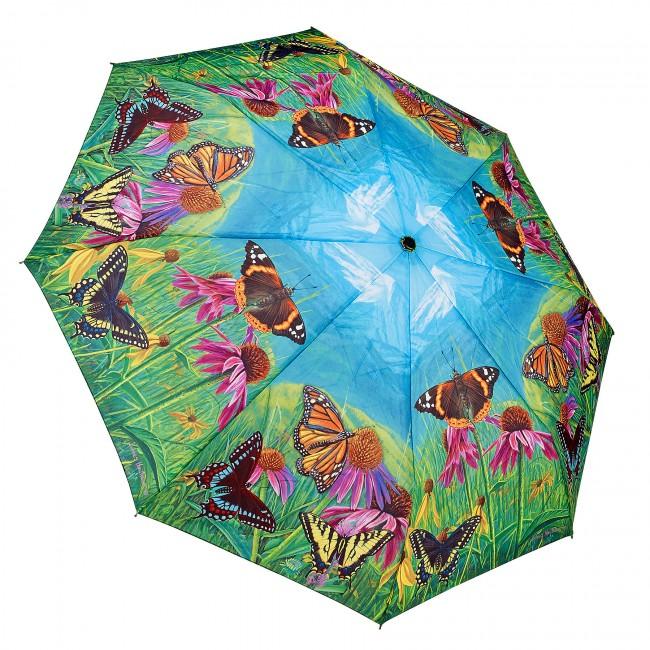 Сгъваем чадър, Пеперуди в планината