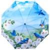 Сгъваем чадър, Сини птици