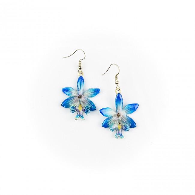 Обици Орхидея Епидендрум, сини