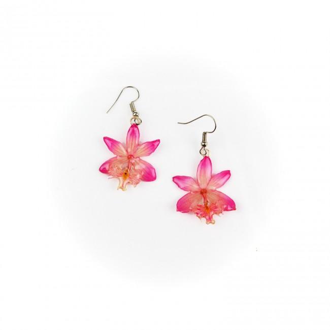 Обици Орхидея Епидендрум, розови