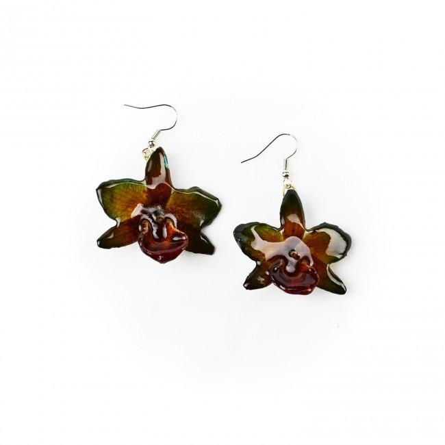 Обици Орхидея Дендробиум Париши, зелено-червени