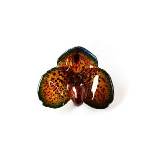Медальон Орхидея Белатулум, тъмносиньо-зелена