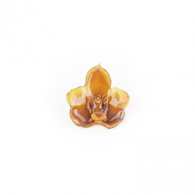 Медальон Орхидея Перистерия Елата, бежов