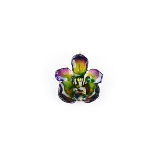 Медальон Орхидея Перистерия Елата, лилаво-зелен