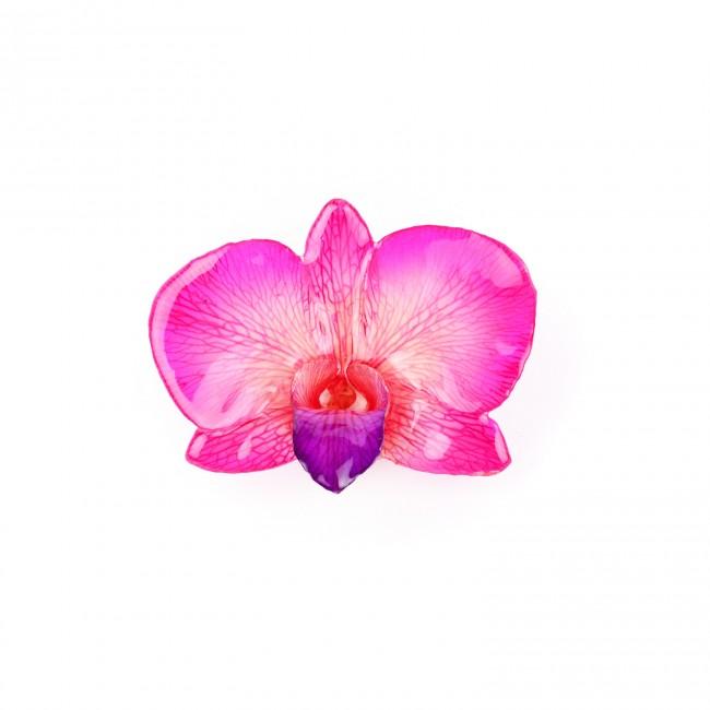 Медальон Орхидея Дендорбиум Луси кръг, розова
