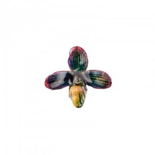 Медальон Орхидея Белатулум, синя