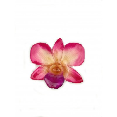Медальон Орхидея Диамант Дендробиум, светлорозова