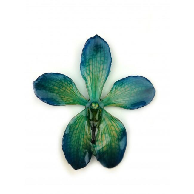Медальон Орхидея Мокара, зелено-синя