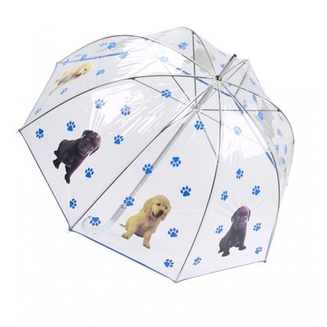 Прозрачен Балон - Свят за кучета