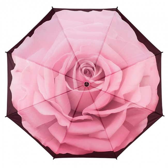 Перфектната роза, прав
