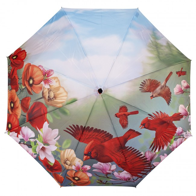 Сгъваем чадър, Кардинали