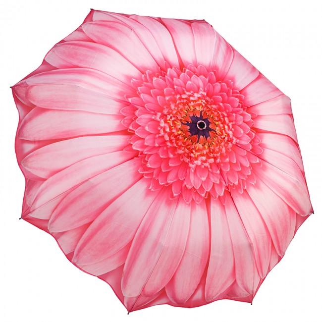 Сгъваем чадър, Розова маргарита