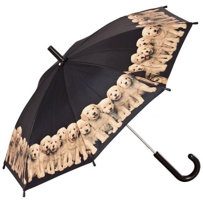 Детски чадър, Кученца